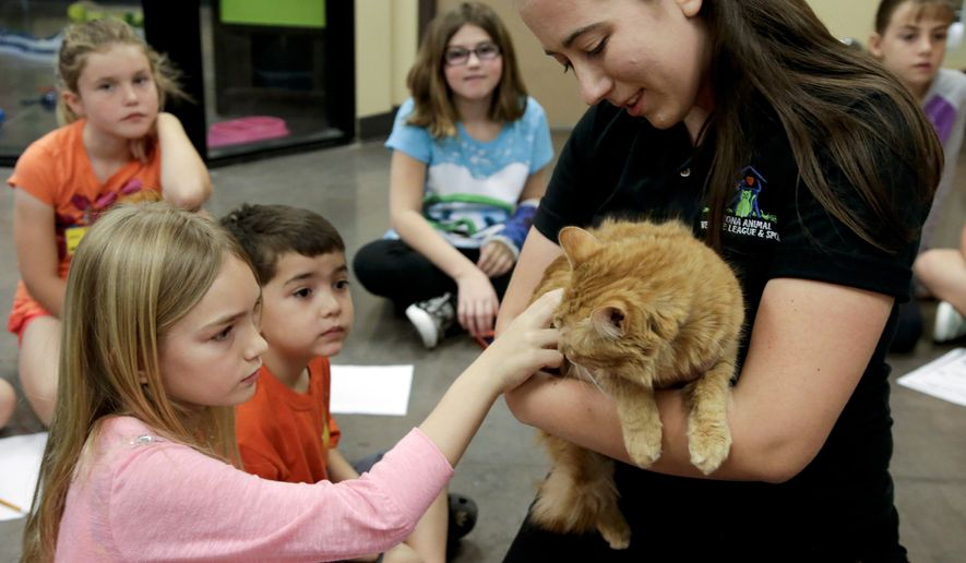 In this Monday, March 16, 2015 photo, Hannah Billings, 8, left, and Avery Ramos, 4, pet a cat held by humane educator Samantha Taubel at the Arizona Animal Welfare League & SPCA spring kids camp in Phoenix. Thousands of youngsters from 6 to 17 will attend similar summer camps this year at hundreds of animal shelters across the country. (AP Photo/Chris Carlson)