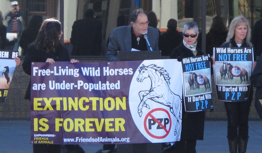 Craig Downer, second from left, a wildlife ecologist for Protect Mustangs, speaks at a rally in Sparks, Nev., on Feb. 26, 2015, protesting plans to roundup hundreds of wild horses in Nevada and inject dozens of the mares with a drug, PZP, that prevents them from reproducing for two years. The Bureau of Land Management agreed Wednesday to abandon _ at least until fall _ the roundup planned southeast of Carson City after a federal judge issued an injunction last month temporarily blocking the gather. (AP Photo/Scott Sonner)