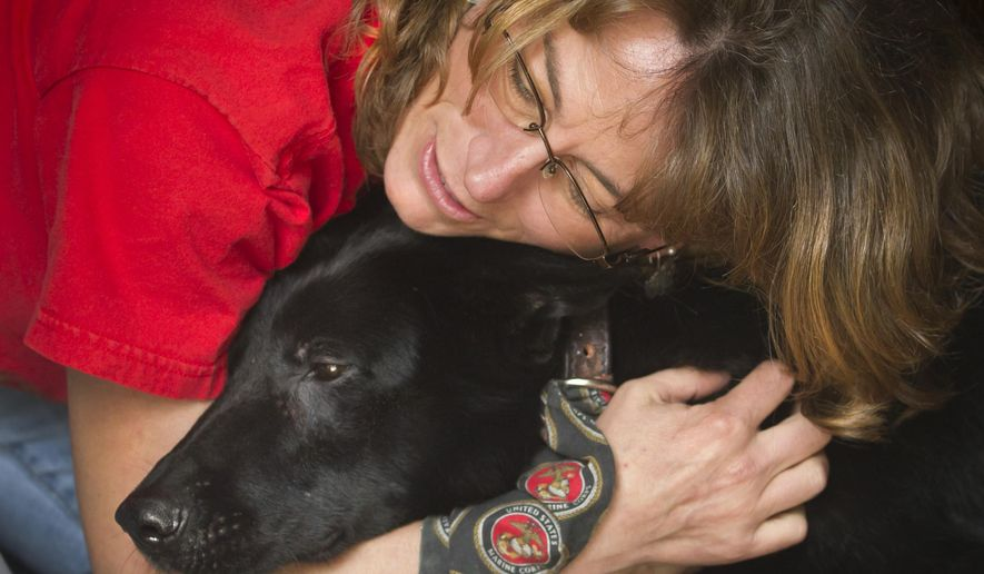 In this photo taken on Friday, March 20, 2015, Kay Hoffman embraces Fenji, a former Marine Corps working dog, at her home in Friendswood, Texas.  Hoffman and her husband Bill have become Fenji's caretakers after she was retired from active duty with her handler Corporal Alex Hoffman, Kay and Bill's son. Prior to working alongside Alex in Afghanistan, Fenji was injured in a 2010 IED explosion in Afghanistan that killed her handler Corporal Max Donahue.  (AP Photo/The Galveston County Daily News, Stuart Villanueva)
