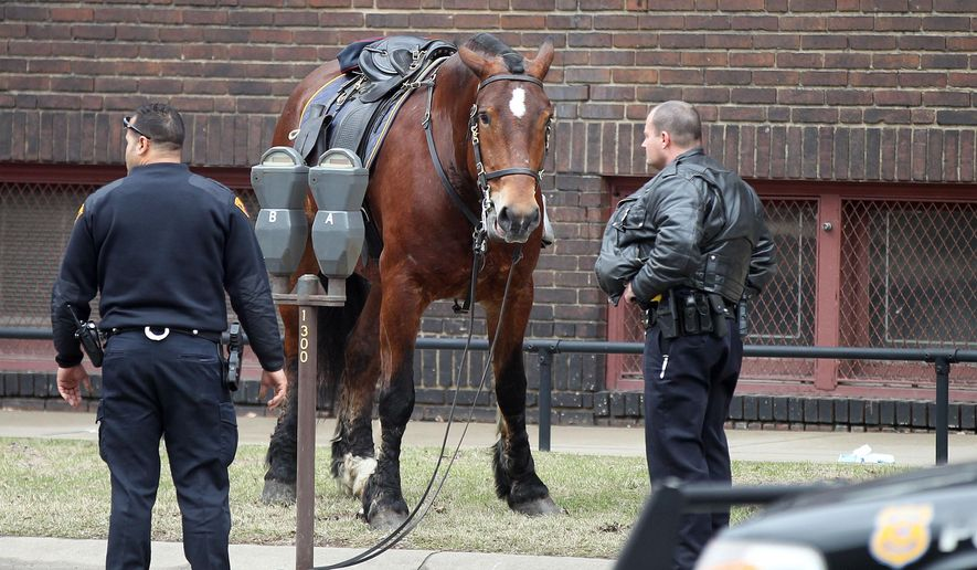 A Cleveland police horse stands beside the street after getting loose Wednesday, March 25, 2015 in Cleveland.  Cleveland police spokesman Sgt. Ali Pillow said Jack, a horse with the department's mounted unit, was tied up at Erie Street Cemetery when he got loose about 3:30 p.m. Wednesday. Police caught up with Jack as he headed east on Superior Avenue. Pillow said there were no reports of injuries or property damage.  (AP Photo/The Plain Dealer, Joshua Gunter) MANDATORY CREDIT; NO SALES