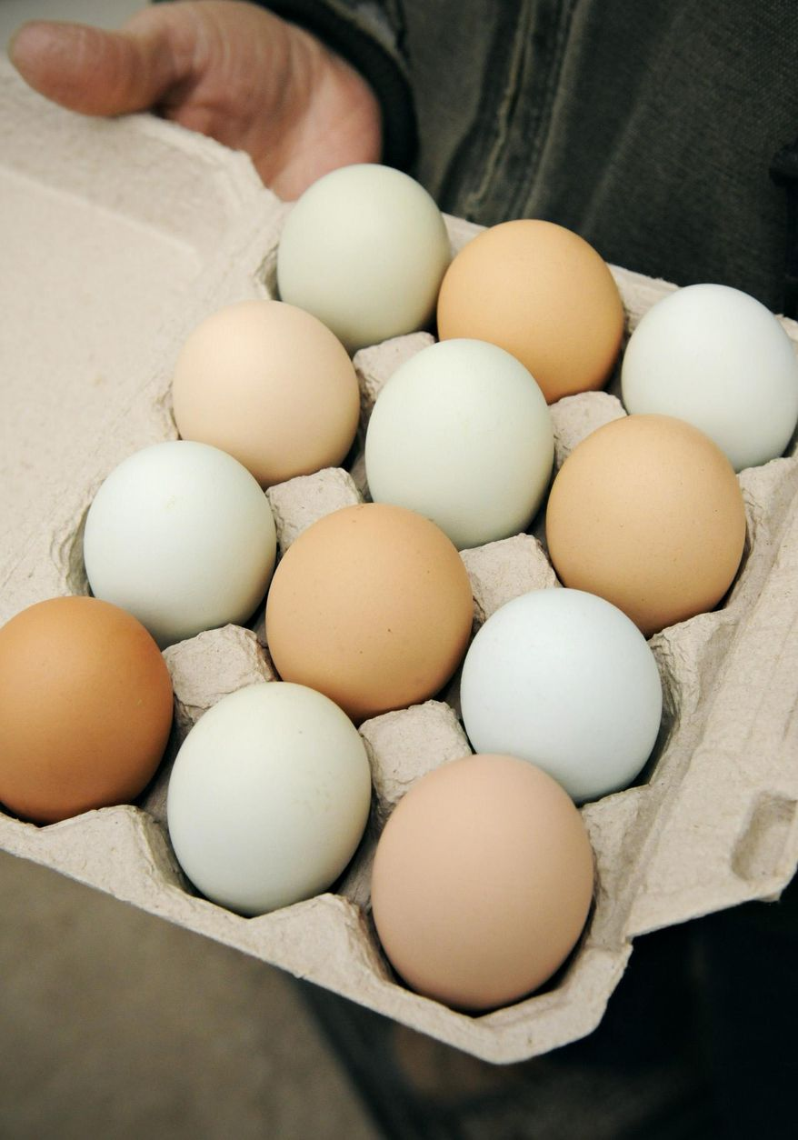ADVANCE FOR SATURDAY MARCH 28 AND THEREAFTER - Terri Emmerich of Emmerich Produce and Pumpkins Farm, in Albany, Minn., shows the colorful eggs from her free range chickens Wednesday, March 18, 2015.  Emmerich, who has been raising chickens for about 15 years, lets the chickens out to roam the yard during the day. (AP Photo/St. Cloud Times, Jason Wachter)