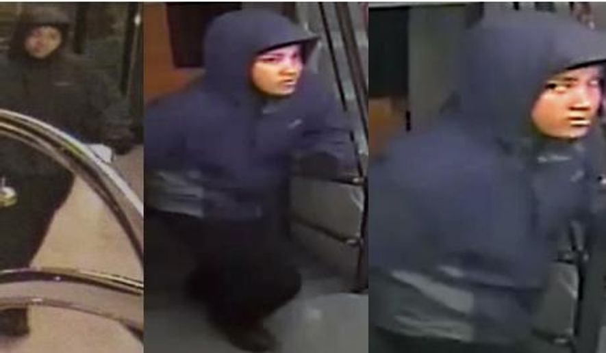 These handout photos from video, provided by the Washington Metropolitan Police Department shows a person of interest, taken inside of the Donovan Hotel in Washington, in the homicide of 30-year-old David Messerschmitt of Washington. A 21-year-old woman charged in the stabbing death of a lawyer at a boutique Washington hotel told police she intended to rob the man but stabbed him in his room when he tried to prevent her from leaving, a court document filed Thursday said. Jamyra Gallmon of Washington was arrested Wednesday and charged with first-degree murder while armed. (AP Photo/Metropolitan Police Department)