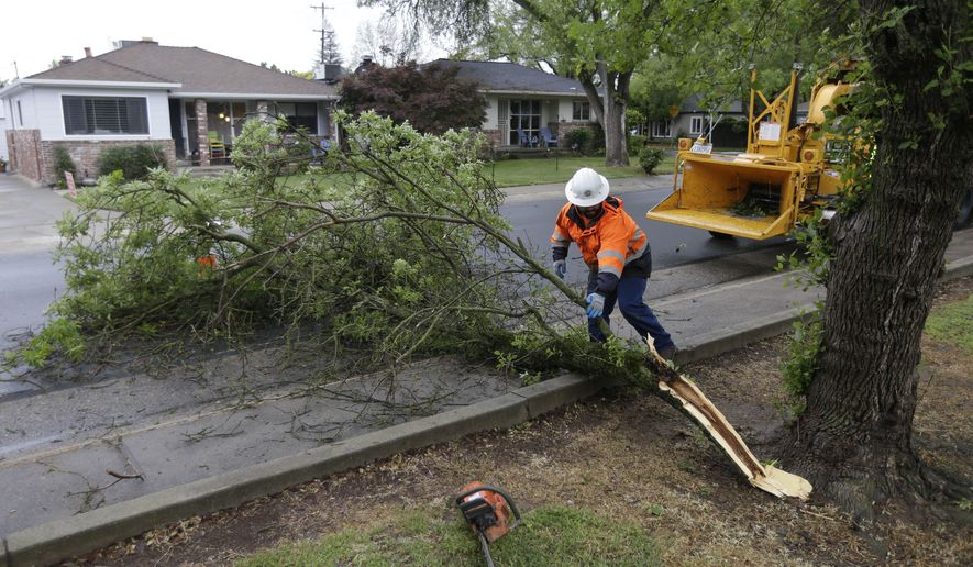 Sacramento City Urban Forestry worker David Bonomi moves a tree limb that has fallen into the street after a storm swept through Sacramento, Calif., Tuesday, April 7, 2015.  An unusually cold spring storm brought heavy rain and hail to parts of Northern California on Tuesday and coated the mountains in snow, a welcome respite that will do little to ease the historic drought, forecasters say. (AP Photo/Rich Pedroncelli)