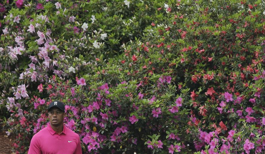 Tiger Woods walks along the sixth fairway during a practice round for the Masters golf tournament Tuesday, April 7, 2015, in Augusta, Ga. (AP Photo/Matt Slocum)