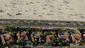 4_132015_california-drought-dismal-s8201.jpg