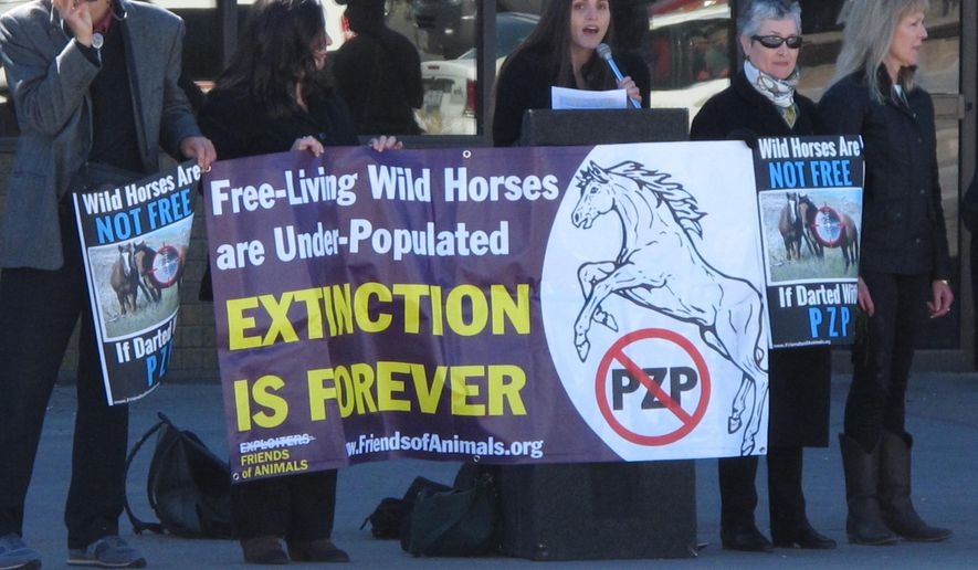 In a Feb. 26, 2015 photo, Edita Birnkrant, campaigns director of the New York-based Friends of Animals, speaks at a rally in Sparks, Nev., protesting plans to roundup hundreds of wild horses in Nevada and inject dozens of the mares with PZP, a drug that prevents them from reproducing for two years. Her group and the San Francisco-based Protect Mustangs are lashing out against other horse advocates who support the use of the drug, including the American Wild Horse Protection Campaign and the Humane Society of the United States. (AP Photo/Scott Sonner).