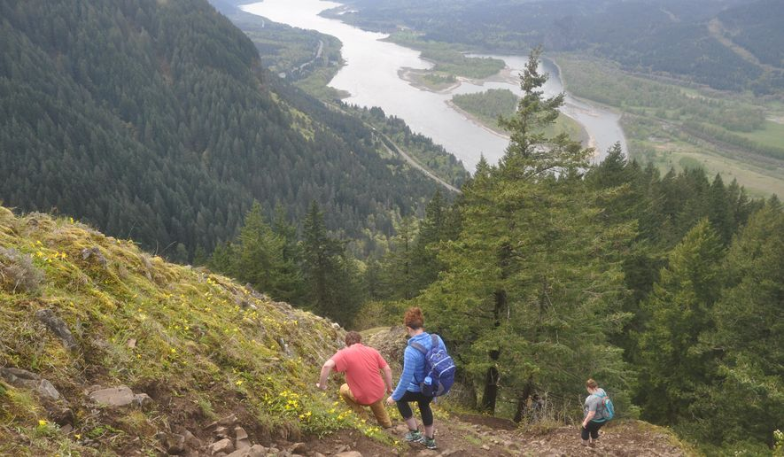 ADVANCE FOR THE WEEKEND OF APRIL 25-26 AND THEREADFTER - In a April 12, 2015 photo, hikers move along a ridge at Munra Point, an airy perch at 1,740 feet in elevation overlooking the Columbia River Gorge National Scenic Area and Bonneville Dam. The route up Munra Point is more of a hand-hold rock scramble, but the route is doable by anyone who doesn't have a fear of heights and is nimble afoot.  (Terry Richard/The Oregonian via AP) MAGS OUT; TV OUT; NO LOCAL INTERNET; THE MERCURY OUT; WILLAMETTE WEEK OUT; PAMPLIN MEDIA GROUP OUT