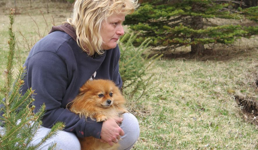 In this April 24, 2015 photo, Laurie Anderson clutches her dog Mandy Mae on her property outside Duluth, Minn. A wolf killed Anderson's other dog earlier in the month. Six dogs have been killed by wolves in northern Minnesota in the last five weeks, outpacing last year's total for the entire state. (Dan Kraker/Minnesota Public Radio via AP)