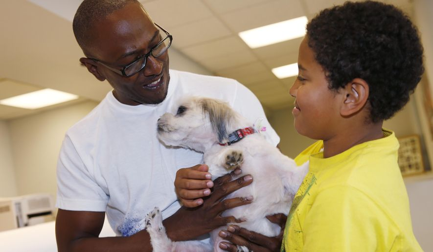 Kelly Booker, left, shows his 10-year-old son, Azzah, right, Lilly the Shih Tzu at the United Airlines cargo terminal Thursday, May 7, 2015, in Denver. Lilly, who disappeared nearly four years ago on July 4, 2011, from her owner's home in west Denver, was found wandering the streets of the Chicago suburb of Elgin, Ill., and nursed back to health. She was identified by a microchip with her owner's contact information. (AP Photo/David Zalubowski)