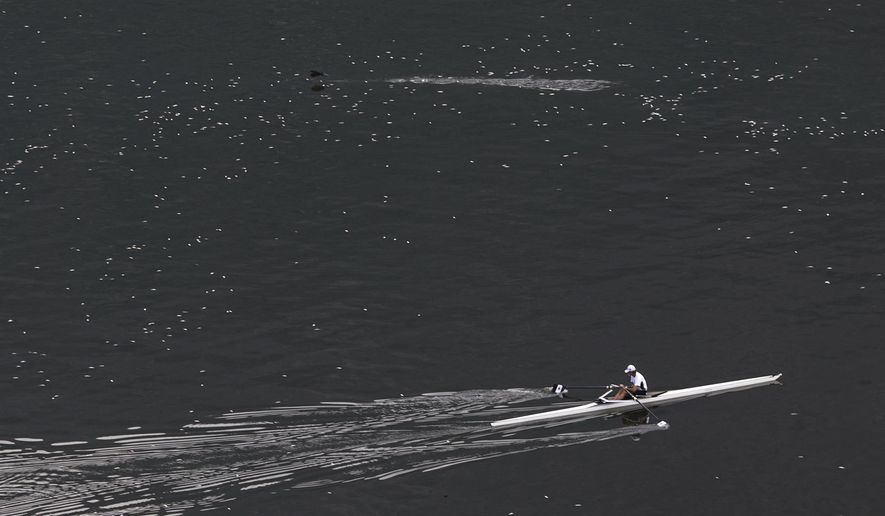 FILE - In this April 16, 2015 file photo, a man rows in the Rodrigo de Freitas lagoon, where Olympic rowing competitions are slated to be held during the 2016 games, surrounded by dead small silvery fish in Rio de Janeiro, Brazil. Matt Smith, the head of rowing's world governing body said in May 2015 that water pollution levels at the sport's venue could force events to be postponed. (AP Photo/Felipe Dana, File)
