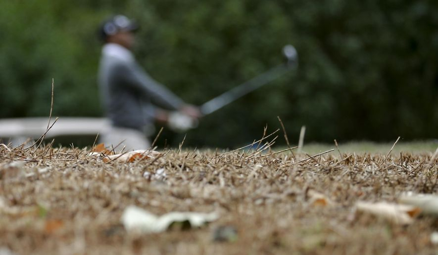 In this April 25, 2015, file photo, a golfer watches his tee shot near dry vegetation in an area beyond the boundaries at the El Niguel Country Club in Laguna Niguel, Calif. (AP Photo/Gregory Bull)