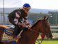 Preakness Stakes Horse Racing.JPEG-02eb2.jpg