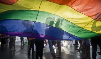 Members of the LGBT movement hold a gay pride flag as they attend a march to mark the International Day Against Homophobia in Managua, Nicaragua, Sunday, May 17, 2015. (AP Photo/Esteban Felix, file)