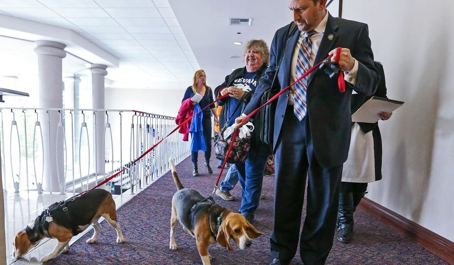 "FILE - In this March 24, 2015, file photo, Nevada Sen. Mark Manendo, D-Las Vegas, brings rescue beagles Dean and Luke into the Legislative Building in Carson City, Nev. The Nevada Assembly passed a so-called ""beagle bill"" Monday, Monday, May 18, 2015, requiring laboratories to put dogs and cats up for adoption when they're done performing research on them. The Assembly voted 40-1 to pass SB261, which was sponsored by Democratic Sen. Manendo. (AP Photo/Cathleen Allison, File)"