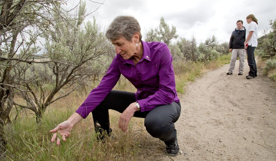U.S. Secretary of the Interior Sally Jewell examines a patch of cheat grass on the side of Hull's Gulch Trail in the Boise Foothills, Tuesday, May 19, 2015, in Boise, Idaho. Jewell has released a plan for a wildfire-fighting strategy intended to protect a wide swath of intermountain West sagebrush country that supports cattle ranchers and is home to a struggling bird species. (Darin Oswald/The Idaho Statesman via AP)