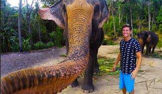 """Christian LeBlanc, a Canadian tourist visiting the Thai island of Koh Phangan, managed to obtain what he calls the """"selfie of a lifetime"""" with a friendly elephant. (Image: Instagram, Christian LeBlanc)"""