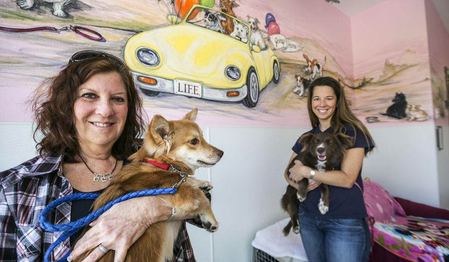 In this Wednesday, May 20, 2015 photo, Laurie Bernie, left, and daughter Emily Bernie, right, founder and president at LIFE Animal Rescue, pose for a photo with rescued dogs Casey, left, and Velvet at their shelter in Agoura Hills, Calif. LIFE Animal Rescue has placed 50 dogs rescued from Thailand over the past two years. Moreover, the 24-year-old rescue has placed more than 6,000 dogs locally, since it was started. (AP Photo/Damian Dovarganes)