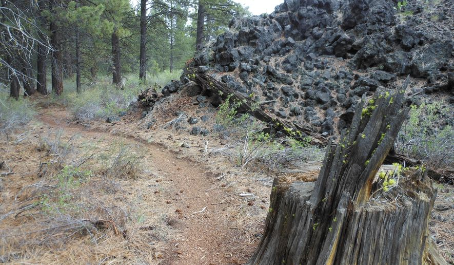 In this photo taken May 13, 2015, the Black Rock Trail skirts a vast lava rock field south of Bend, Ore. The trail is tame enough for beginner riders but also offers enough technical challenges to make it fun for more advanced mountain bikers. (Mark Morical/The Bulletin via AP)