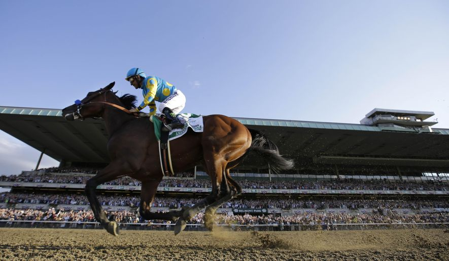 American Pharoah gallops past the grandstand with Victor Espinoza up after crossing the finish line to win the 147th running of the Belmont Stakes horse race at Belmont Park, Saturday, June 6, 2015, in Elmont, N.Y. American Pharoah is the first horse to win the Triple Crown since Affirmed won it in 1978. (AP Photo/Julio Cortez)
