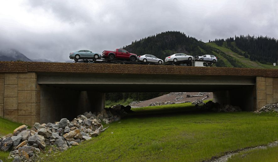 In a June 2, 2015 photo, an underpass helps animals safely get past I-90 east of Snoqualmie Summit, Wash. The 150-foot-long structure is designed to provide safe passage for species ranging from black bear and cougar to deer, elk _ and even squirrels, mice and lizards. (Ken Lambert/The Seattle Times via AP) SEATTLE OUT; USA TODAY OUT; MAGS OUT; TELEVISION OUT; NO SALES; MANDATORY CREDIT TO BOTH THE SEATTLE TIMES AND THE PHOTOGRAPHER