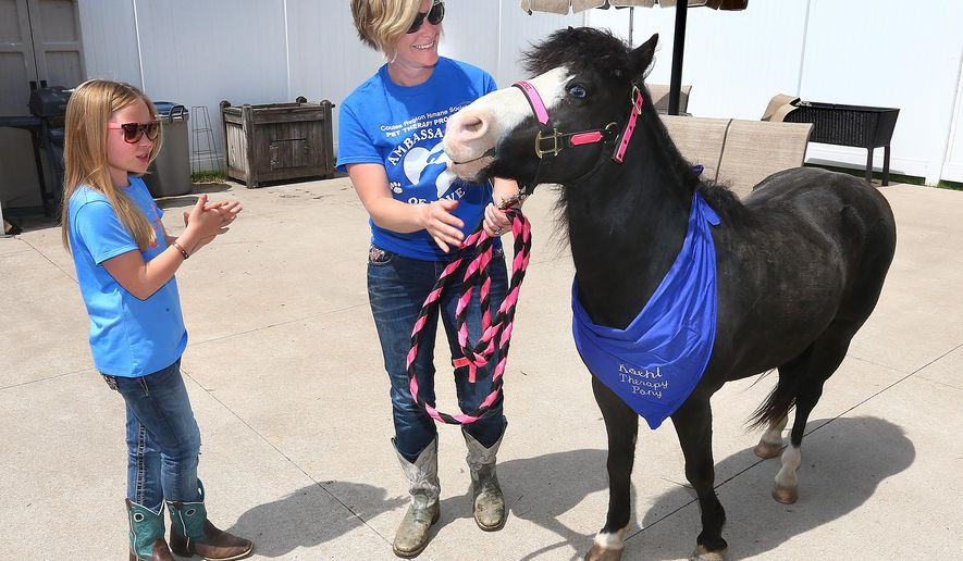 ADVANCE FOR WEEKEND EDITIONS JUNE 13-14 - In this June 2, 2015 photo, Koehl, a Shetland-Welsh pony, and his owners Gretchen Heilman and her daughter Maclaine, 8, visit Clare Bridge of La Crosse, Wis. Koehl is among about 70 animals in the Coulee Region Humane Society's pet therapy program, said Erin Olson, the society's pet therapy and education coordinator. (Erik Daily/La Crosse Tribune via AP)