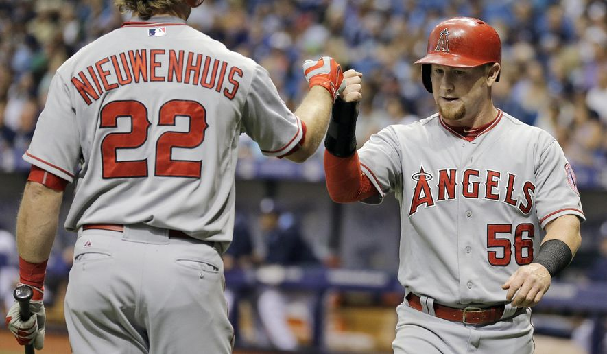 Los Angeles Angels right fielder Kole Calhoun (56) celebrates with teammate Kirk Nieuwenhuis (22) after scoring on an error by Tampa Bay Rays third baseman Jake Elmore during the first inning of a baseball game Tuesday, June 9, 2015, in St. Petersburg, Fla.  (AP Photo/Chris O'Meara)