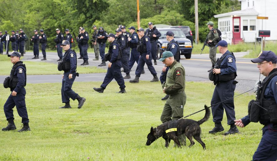 Teams of corrections officers and a police dog walk across a field towards woods near the Clinton Correctional Facility, Tuesday, June 16, 2015 in Dannemora, N.Y. Search teams are back in the woods of northern New York looking for two convicted murderers who broke out of a maximum-security prison a week and a half ago. The more than 800 law enforcement officers searching for David Sweat and Richard Matt have steadily shifted their focus eastward along Route 374 leading from the village of Dannemora, home to Clinton Correctional Facility.  (AP Photo/Mark Lennihan)