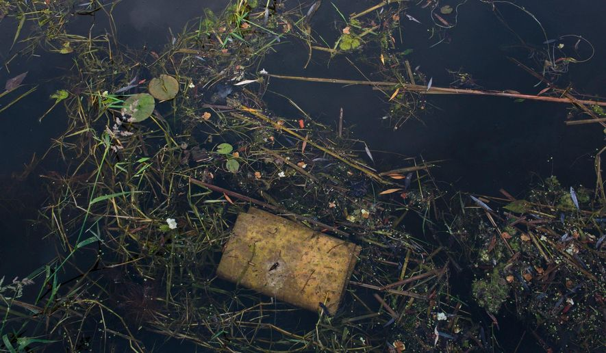 An oil absorption pad sits in weeds on the surface of the water in Fenner's Ditch bayou off of Bear Lake in North Muskegon, Mich., on June 12, 2015. The government is looking into what it would take to clean up the western Michigan lake that has had oil seeping into it for more than two decades. The Michigan Department of Environmental Quality and the U.S. Environmental Protection Agency asked consulting companies to quote a price for conducting a feasibility study on the Bear Lake project.  (Joel Bissell/The Muskegon Chronicle via AP) ALL LOCAL TELEVISION OUT; LOCAL TELEVISION INTERNET OUT