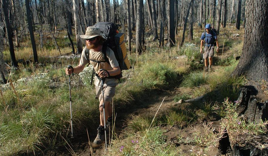 "File--In this Aug. 30, 2007, file photo, Andrew Schurr leads Cal Seabaugh up the Pacific Crest Trail near Santiam Pass, Ore., in the Oregon Cascades.   For the first time, the U.S. Forest Service has restricted, to 50 per day,  the number of ""thru-hikers"" embarking from the trail's southernmost point in Campo, Calif. (David Patton/Albany Democrat Herald via AP, file) MANDATORY CREDIT"