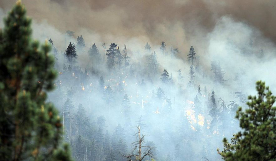 The Lake Fire burns for a second day on Thursday, June 18, 2015 near Jenks Lake in Angeles Oaks, Calif.  Firefighters battled two blazes in Southern California, one that was growing as it churned through 30-foot pine trees in a remote area of the San Bernardino Mountains and another that was slowing in northern San Diego County. (Micah Escamilla/The Sun via AP)    MANDATORY CREDIT