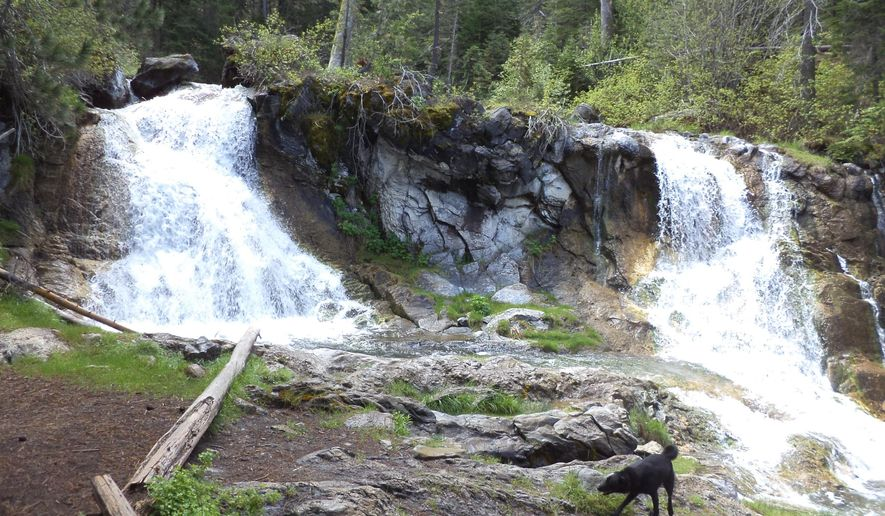 Paulina Creek creates a scenic waterfall along a stretch of Peter Skene Ogden National Scenic Trail on the flank of Newberry Volcano near Sunriver, Ore., June 14, 2015.  Paulina Creek begins as outflow from Paulina Lake, spilling down the flank of the shield volcano with an assortment of cascades and falls that make this hike scenic and special, especially on a hot summer day. (David Jasper/The Bend Bulletin via AP) MANDATORY CREDIT