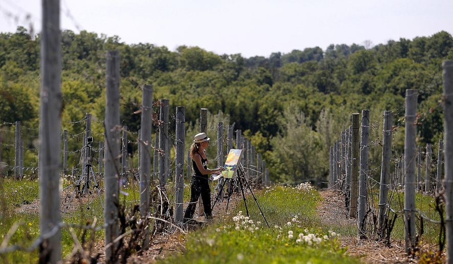 Grand Rapids artist Stephanie Schlatter works on an acrylic painting in the vineyards of 45 North Vineyards and Winery in Lake Leelanau. Schlatter's new Project 24 will take her to 24 Leelanau Peninsula wineries to create a painting honoring what is unique about each. (Jan-Michael Stump/The Traverse City Record-Eagle via AP) MANDATORY CREDIT