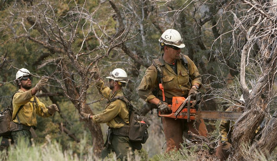 Members of the Beckwourth Handcrew clears brush and trees that run along Highway 38 near Onyx Summit in the San Bernardino National Forest, California, as a fire continues to burn on Thursday, June 25 2015. A huge forest fire that has been burning through rugged terrain in the San Bernardino Mountains for more than a week forced evacuations as it stretched northeast into the desert. (Stan Lim/The Press-Enterprise via AP)  MAGS OUT; MANDATORY CREDIT; LOS ANGELES TIMES OUT