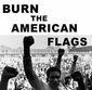 Burn American Flag.jpg