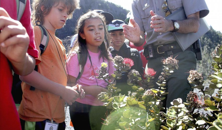 ADVANCE FOR SATURDAY, JULY 4, 2015 AND THEREAFTER.- In this June 25, 2015 photo, Ira Mullins, 10, second from left, and Ku'ulei Makuakane-Jarrell, 8, center, study an ohia tree in the Kilauea Iki crater at Hawaii Volcanoes National Park, Hawaii. Over a dozen junior rangers participated in the park's annual Keiki o Hawaii Nei program, a three-day exploration of parks across Hawaii Island. (Ivy Ashe/ Tribune-Herald via AP)