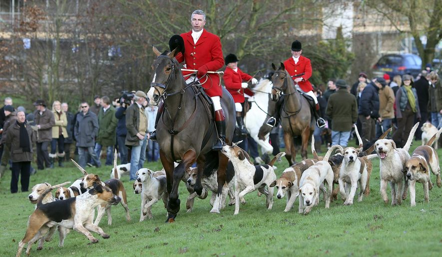 FILE - This is a Saturday, Dec. 26, 2009  file photo of members of the Albrighton Woodland Hunt club prepare for theirfox hunt at Hagley Hall in Hagley, England. Here's some free political advice from Paul McCartney to Prime Minister David Cameron: Don't mess with the fox hunting ban. The former Beatle said Friday July 10, 2015, that any move to reintroduce hunting would be unpopular. (AP Photo/Simon Dawson, File)