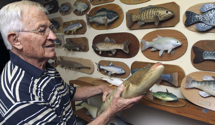 In this June 29, 2015 photo, Walt Gursky displays his collection of hand carved wooden fish in Brighton, Mich. The 87-year-old Brighton resident is looking to donate his hand-carved wooden fish of Michigan waters, nearly 100 individual pieces in all, to the Michigan Department of Natural Resources use as educational tools. (Alan Ward /Livingston County Daily Press & Argus via AP)  NO SALES; MANDATORY CREDIT