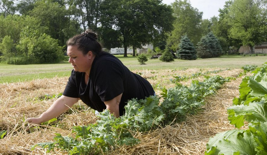 In this photo taken May 29, 2015, Cheyanne Marston lays down straw to cut down on weeds and to help keep in the moisture at one of her two garden patches in Decatur, Ill. Last year she only had to water these gardens twice. She is preparing for the start of the farmers market season. (Lisa Morrison/Herald & Review via AP)