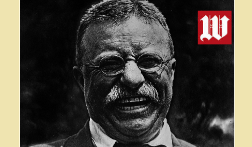 Theodore Roosevelt. Photo in public domain. Image created by W. Scott Lamb (share freely).