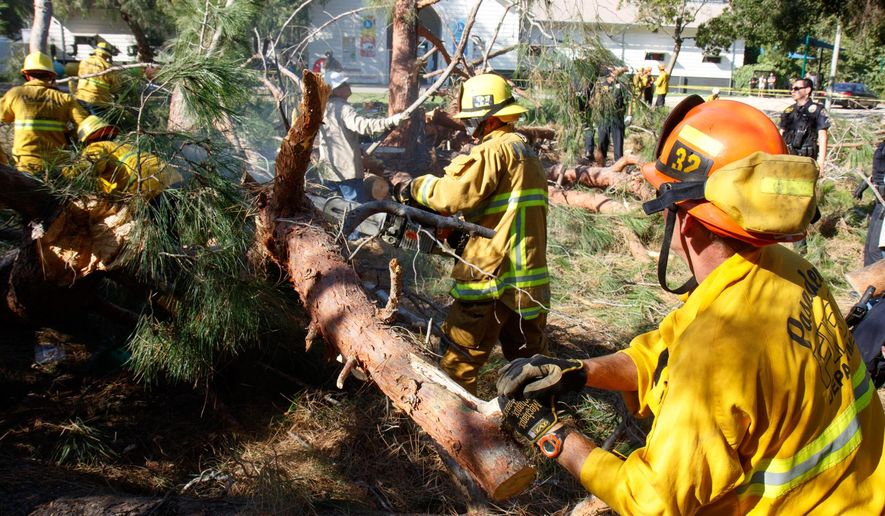 In this image released by Pasadena Fire, Pasadena firefighters work to remove a tree that fell near Kidspace Children's Museum in Pasadena, Calif., Tuesday, July 28, 2015. Witnesses say the tree made a cracking sound and came down on children just as a summer day camp at the museum was letting out for the day. (Jamie Nicholson/Pasadena Fire via AP)