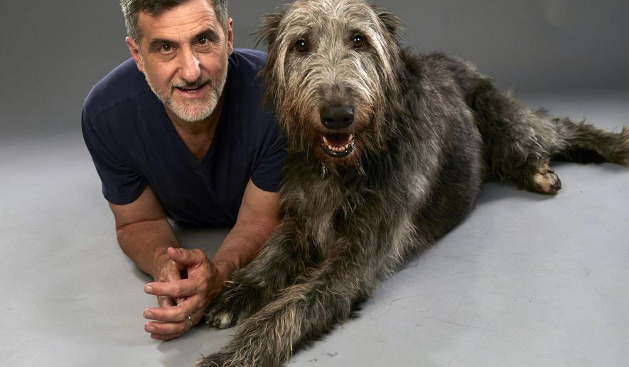 "In this June 12, 2015 photo provided by Discovery Communications, veteran animal trainer Bill Berloni poses with Taran, who was trained to play Winn Dixie in the movie ""Because of Winn-Dixie,"" on his farm in Higganum, Conn. When he isn't performing or modeling, Taran likes to lean on people. Both Berloni and Taran will be in the upcoming Discovery Family Channel show ""From Wags to Riches with Bill Berloni,"" which debuts on Aug. 6, 2015. (David Johnson/Discovery Communications via AP)"