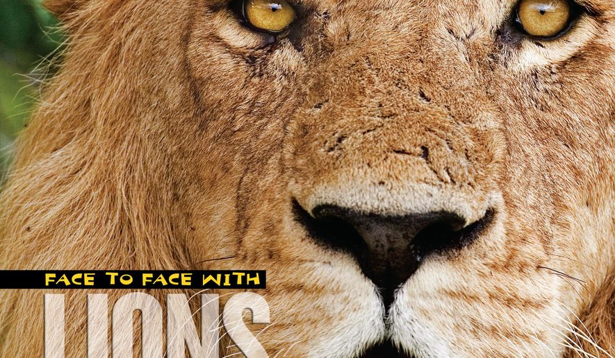 "This book cover image released by National Geographic Children's Books shows ""Face to Face With Lions"" by Beverly and Dereck Joubert. Part of National Geographic's ""Face to Face With Animals"" series, this offering is full of detail and close-up photography to satisfy young buffs in classrooms or at home. The book covers diet, life expectancy reproduction and how prides function. (National Geographic Children's Books via AP)"