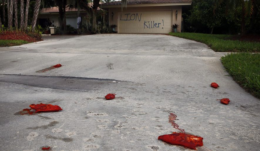 "A driveway is shown vandalized Tuesday, Aug. 4, 2015, at the Marco Island home of dentist Walter J. Palmer. The home was discovered defaced with the worlds ""LION Killer!"" and littered with pigs feet drenched in hot sauce. Palmer, a Minnesota resident, is wanted in the killing of Zimbabwe's famous lion, Cecil, a lion who drew thousands of tourists and dollars annually. (Corey Perrine/Naples Daily News via AP)"
