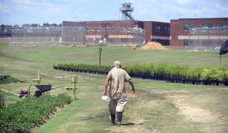 ADVANCED FOR RELEASE SATURDAY, AUGUST 15, 2015 Perry Correctional Institution in Pelzer has been growing its horticulture program for about eight years. About 20 inmates work the gardens each day to provide fresh produce for the penitentiary's cafeteria. The inmates say the time spent cultivating the land has given them a renewed sense of self-worth and a skill to use on the outside. Photo taken on July 22, 2015 in Spartanburg, S.C. (Alex Hicks/Spartanburg Herald-Journal via AP)