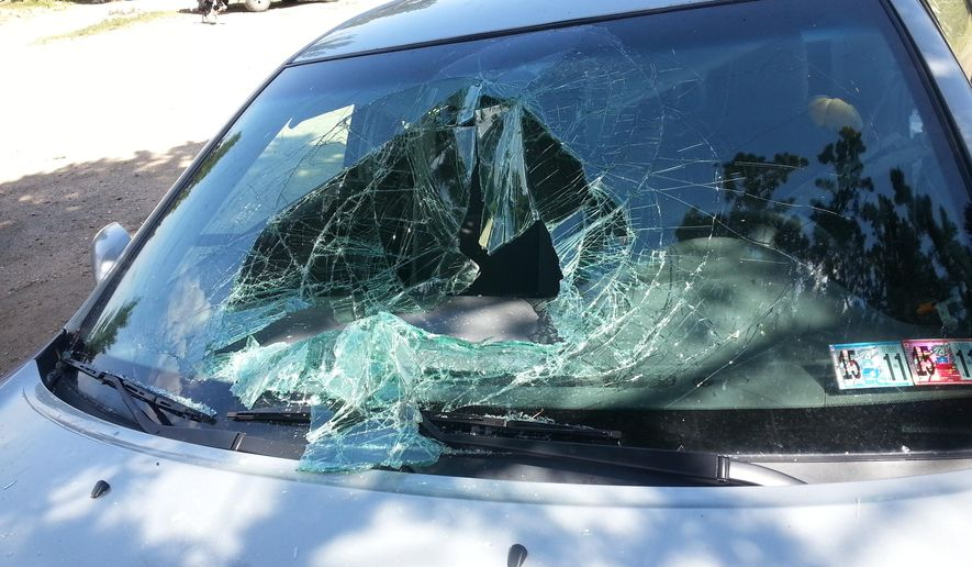 This Aug. 13, 2015, photo provided by Greg Creasy shows some of the damage caused to a Toyota Camry after a black bear broke into the car and became trapped, near Red Lodge, Mont., north of the eastern edge of Yellowstone National Park. Nobody was hurt in the incident. (Greg Creasy via AP)