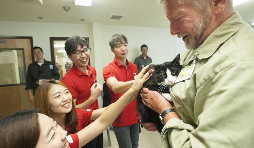 In this photo taken Thursday, Aug. 6, 2015, South Korean college students, from left, Woo Jeong Kim, Yuree Ko, Hyung Min and Hyun Jae Roo talk with inmate Larry Swan, right, about his experience caring for a cat, named Shaun, while in Larch Prison in Yacolt, Wash. The group visited the prison to learn about its cats-and-inmates program so they can create a similar program in youth detention centers in South Korea. (Natalie Behring/The Columbian via AP) MANDATORY CREDIT