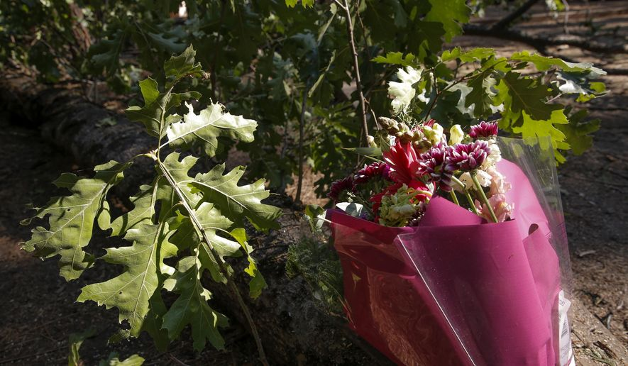 In this photo taken Aug. 15, 2015, a bouquet of flowers was left on the tree branch that fell at the scene of the accident at the Upper Pines campground in Yosemite National Park, Calif. The deaths of two young campers killed when a tree branch fell on their tent and a campground closure because of plague cast a pall over California's Yosemite National Park at the height of the summer tourist season. (Michael Macor/San Francisco Chronicle via AP) MANDATORY CREDIT NO SALES-MAGS OUT TV OUT INTERNET AP MEMBER NEWSPAPERS ONLY EXAMINER SOFT OUT