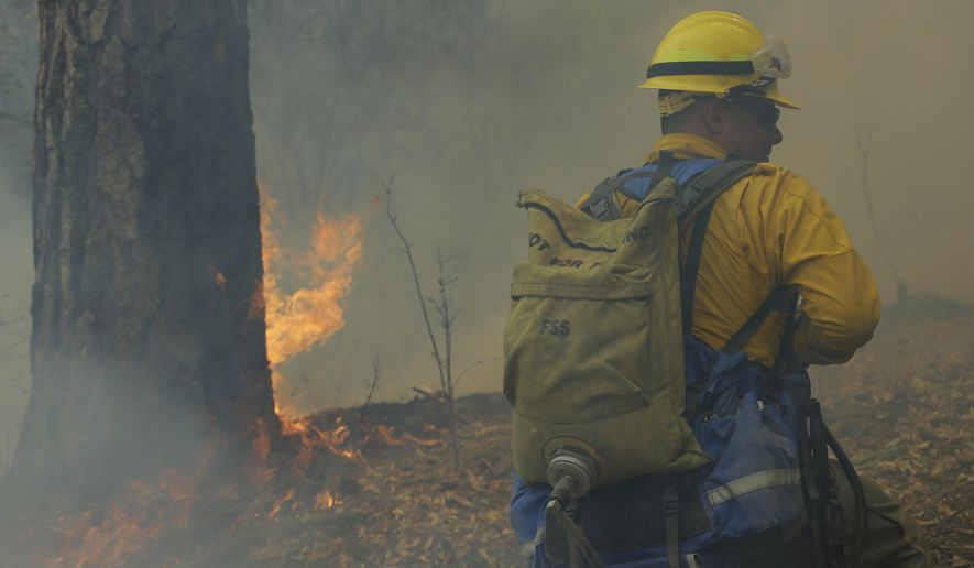 Washington National Guard Sgt. Danny Redington carries water on his back to fight hot spots as he stands near a burning tree while fighting the First Creek Fire, Tuesday, Aug. 18, 2015, near Chelan, Wash. (Associated Press)