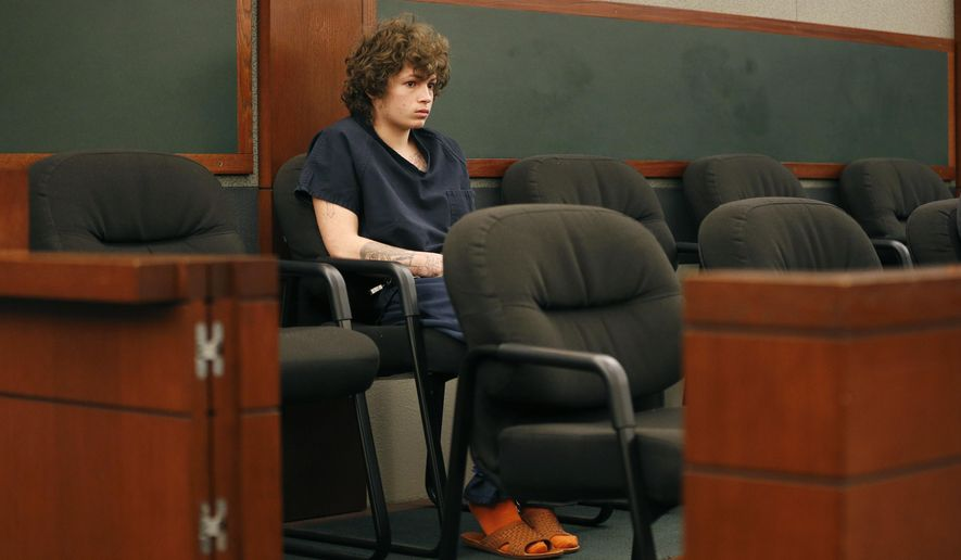 Erich Milton Nowsch Jr. appears in court Friday, Aug. 21, 2015, in Las Vegas. Nowsch and Derrick Andrews are accused of fatally shooting Las Vegas neighborhood mother Tammy Meyers in a murder case initially thought to be a road rage killing. (AP Photo/John Locher)