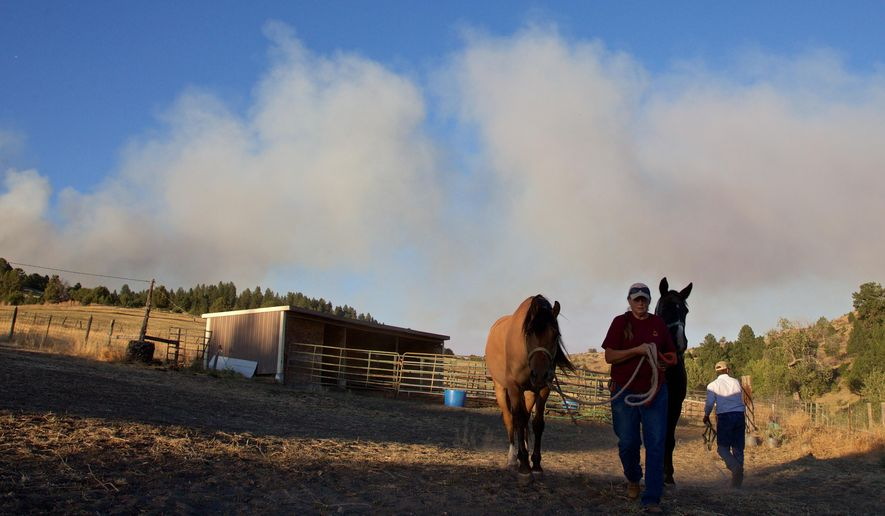 Gale Sheppard evacuates her horses as a wildfire approaches in Prairie City, Ore., Thursday, Aug. 20, 2015. High winds forecast for the an of eastern Oregon where the wildfire has destroyed dozens of homes have prompted more evacuation orders, officials said Thursday. (Thomas Boyd/The Oregonian via AP) MAGS OUT; TV OUT; NO LOCAL INTERNET; THE MERCURY OUT; WILLAMETTE WEEK OUT; PAMPLIN MEDIA GROUP OUT; MANDATORY CREDIT